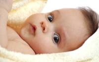 عکس نوزاد دوست داشتنی 15