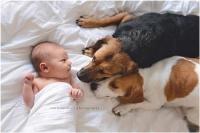 عکس نوزاد دوست داشتنی 9
