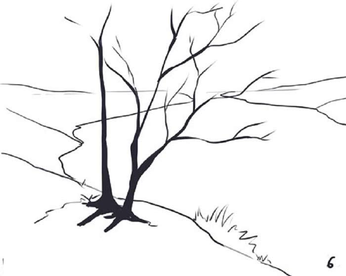 درخت-۲۲
