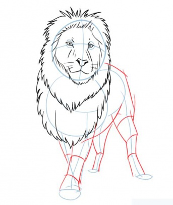 cartoon-lion-6-how-to-drawشیر