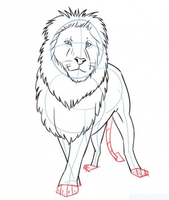 cartoon-lion-7-how-to-drawشیر
