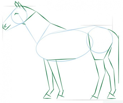 realistic-horse-standing-3-how-to-drawاسب