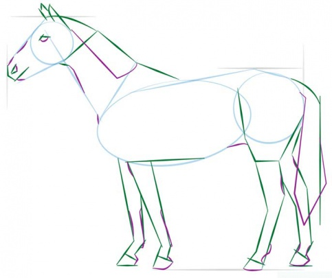 realistic-horse-standing-4-how-to-drawاسب