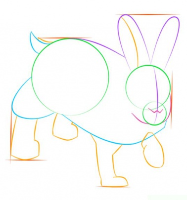 snowshoe-hare-6-how-to-drawخرگوش