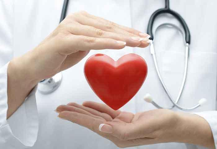 قلب-جنین۱