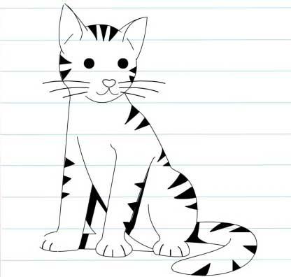 گربه-زیبا