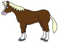 اسب-۱۰