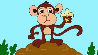 تصویر از آموزش تصویری و گام به گام نقاشی میمون برای کودکان +فیلم