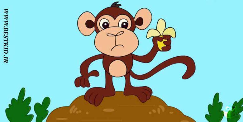 نقاشی-میمون۰