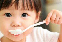 تغذیه-نوزاد
