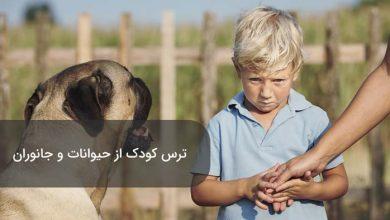 تصویر از دلیل ترس از حیوانات در کودکان و ۲۱ روش درمان موثر
