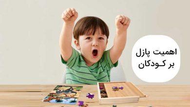 تصویر از اهمیت پازل های تصویری برای کودکان (۱۰ فایده اصلی)