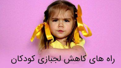 تصویر از ۹ تا از راه های کاهش لجبازی کودکان (کاملا موثر)